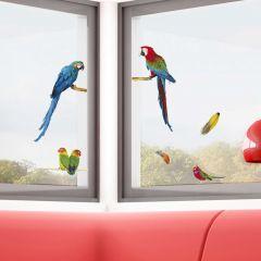 Raamstickers Parrots