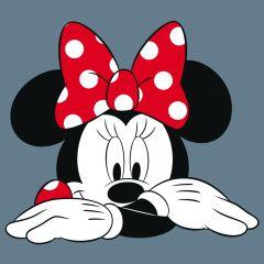 Canvas Minnie Mouse